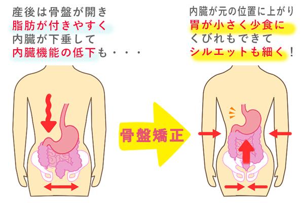 出産による骨盤の開きと内臓下垂
